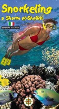 Snorkeling a Sharm El Sheikh