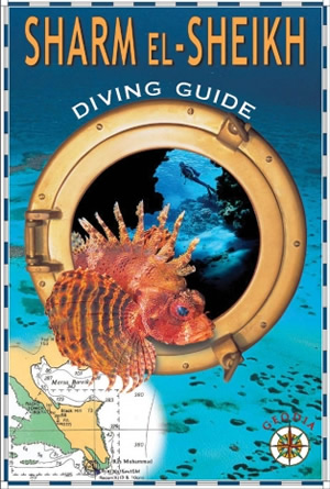 Sharm El Sheikh Diving Guide
